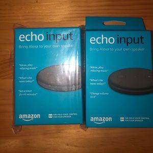 2 Amazon Echo inputs